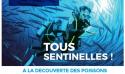 Découverte des poissons de Méditerranée avec le Seaquarium