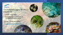 Formation Plongeur bio niveau 2 (PB2) - Janv-Avril 2022