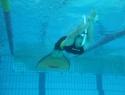 Nage avec palmes -Trophée des jeunes à Lunel