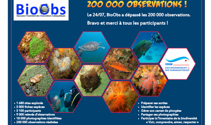 200 000 observations pour BioObs !