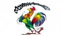 Commission PSP : les Champions de France régionaux 2015
