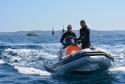Pêche sous-marine : remise à niveau cadres