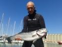 Pêche sous-marine -Stage National  Cadres  Cerbère du  12 au  13/11/16